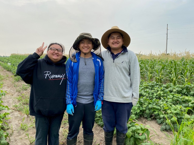 A visit to the Lee farm