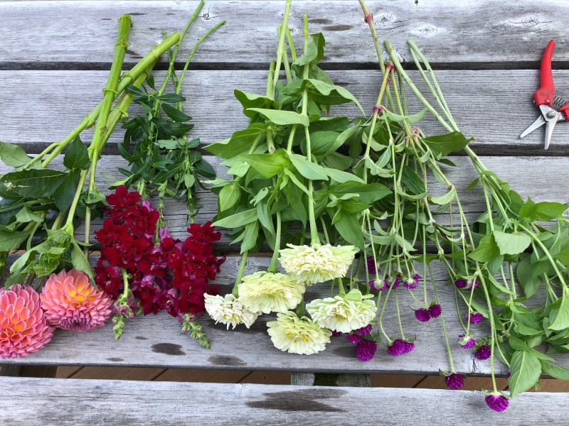 Extend the life of your farmers market bouquet